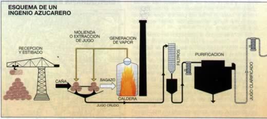 Circuito Productivo De La Caña De Azucar : Tucuman r a la caña de azucar